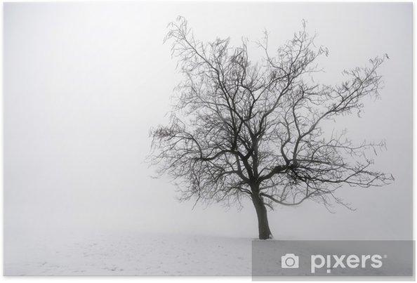 Poster Arbre d'hiver dans le brouillard - Thèmes