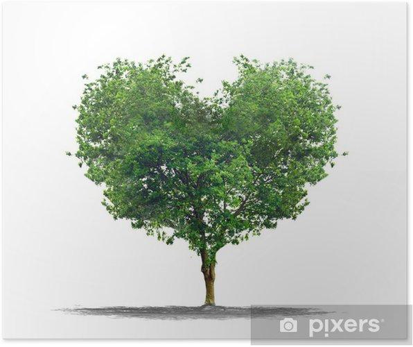 Póster Arbre En Forme De Coeur Amour Et Concepto De La Naturaleza