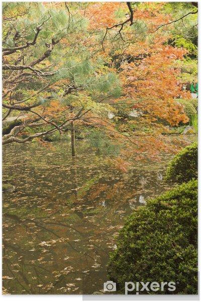 Póster Arces rojos plantados en la orilla y la reflexión. - Campos
