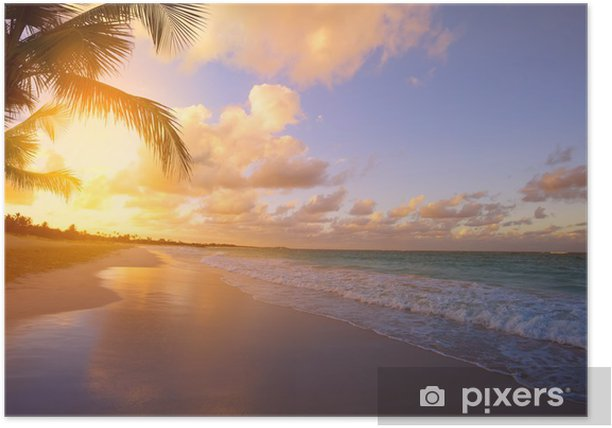 Art Beautiful sunrise over the tropical beach Poster - Themes