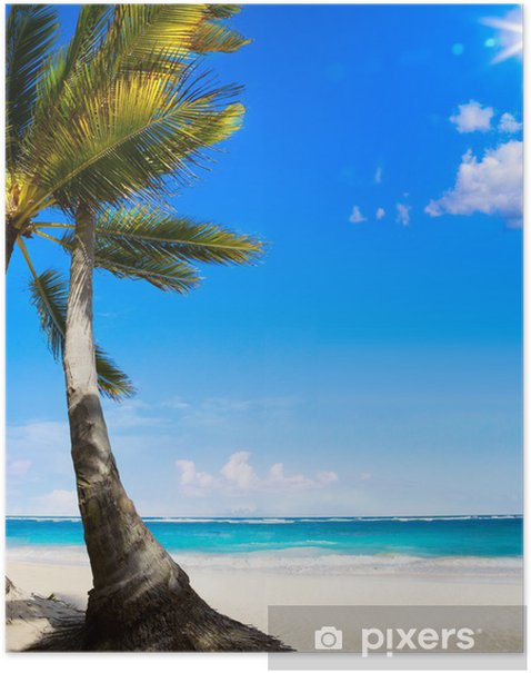 Art Untouched Caribbean tropical beach Poster - Themes