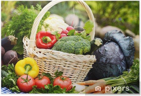 Poster Assortiment de légumes dans le panier en osier dans le jardin - Légumes