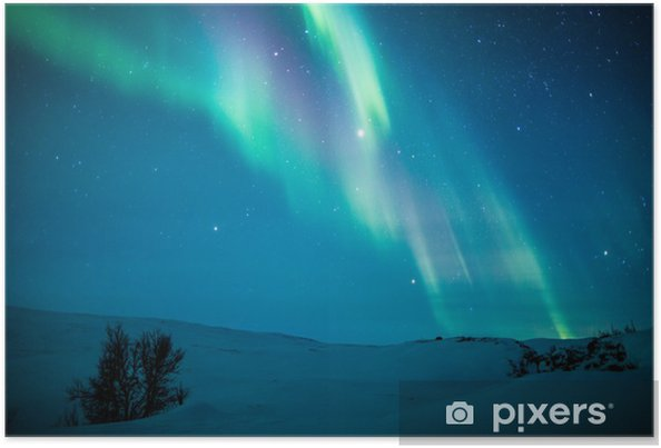 Poster Aurores boréales (Aurora borealis) de neige au-dessus de - Thèmes
