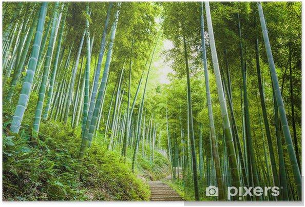 Póster Autoadhesivo Bosque de bambú y de la pasarela - Destinos