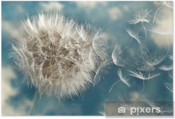 Póster Autoadhesivo Las semillas de diente de león en el viento perder - Temas