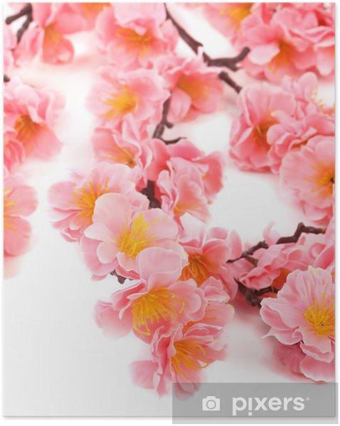 Póster Autoadhesivo Primer plano de flores de color rosa. - Destinos