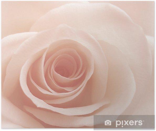 Póster Autoadhesivo Rosa - Temas