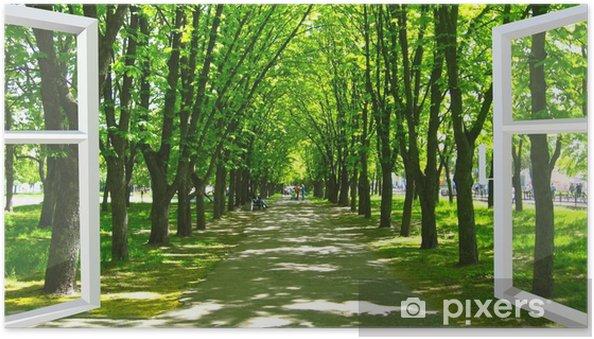 Póster Autoadhesivo Ventana abierta al hermoso parque con muchos árboles verdes - Temas