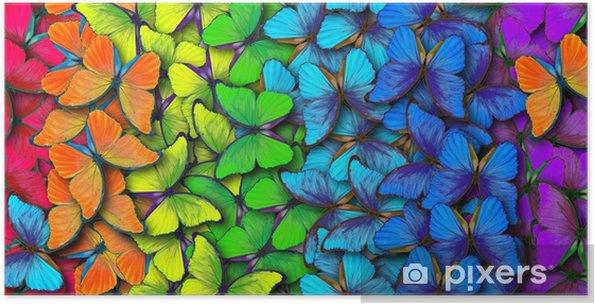 Poster autocollant Couleurs de l'arc-en-ciel. modèle de morpho papillons multicolores, fond de texture. - Ressources graphiques