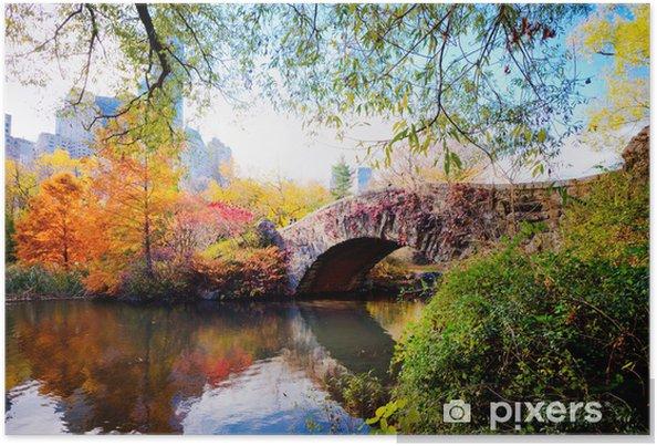 Poster Automne dans Central Park, New York - Thèmes