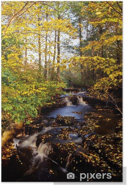 Autumn creek Poster - Seasons