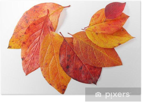 autumnal leaves Poster - Seasons