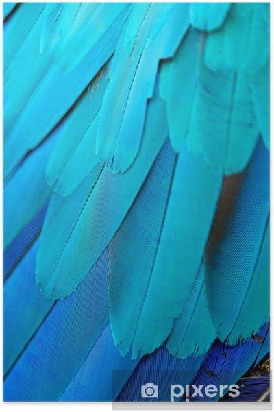 Póster Azul y plumas de guacamayo de oro. - Texturas