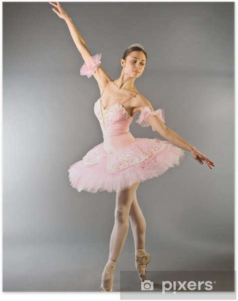 Ballerina's toe dance isolated Poster - Themes