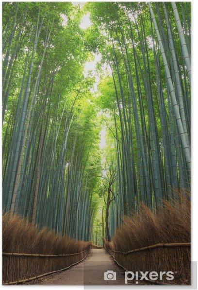 Bamboo Forest in Japan, Arashiyama, Kyoto Poster - Plants
