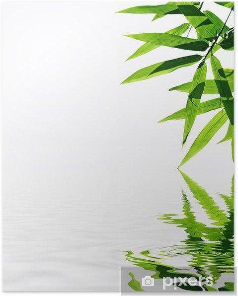 poster bambou avec reflet dans l 39 eau ambiance zen pixers nous vivons pour changer. Black Bedroom Furniture Sets. Home Design Ideas
