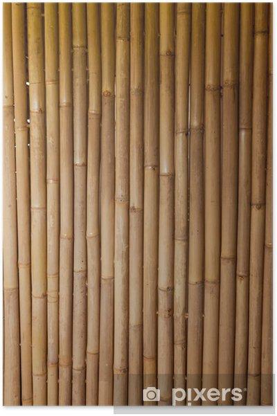 Poster Bambu -