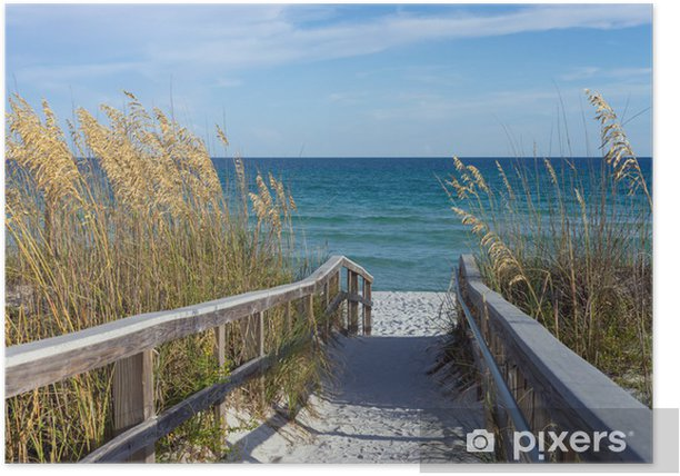 Beach Boardwalk with Dunes and Sea Oats Poster - Themes