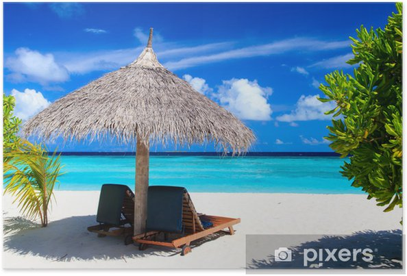 Beach Chairs On Tropical Poster
