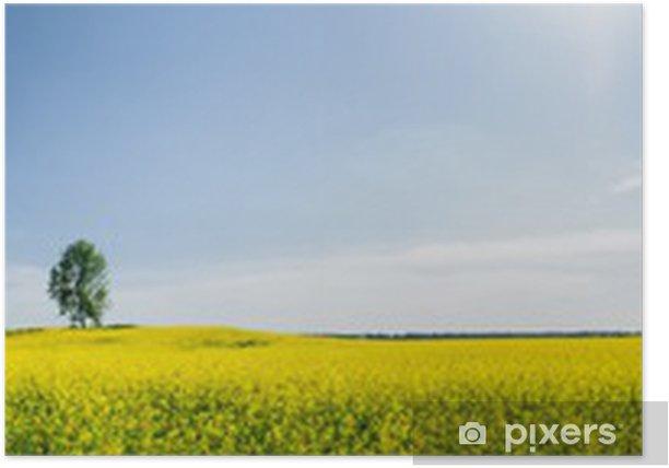 Poster Beau printemps panoramique - Saisons
