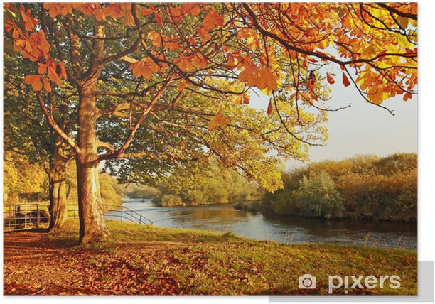Beautiful Autumn in the park Poster - Destinations