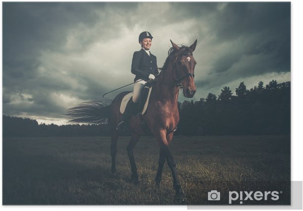 Beautiful girl sitting on a horse outdoors against moody sky Poster - Industry