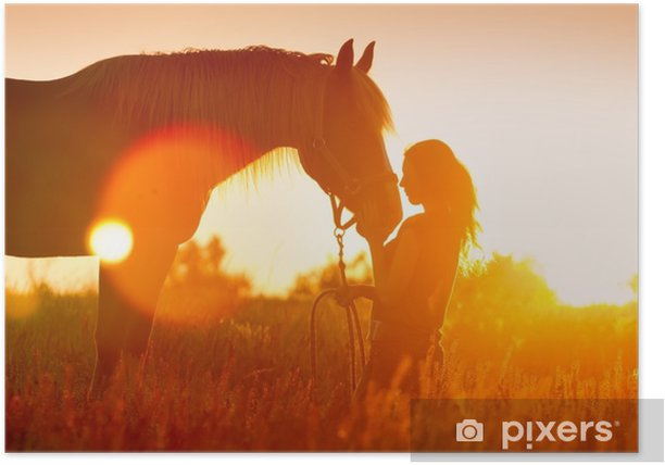 Beautiful silhuette of girl and horse at sunset Poster - Animals