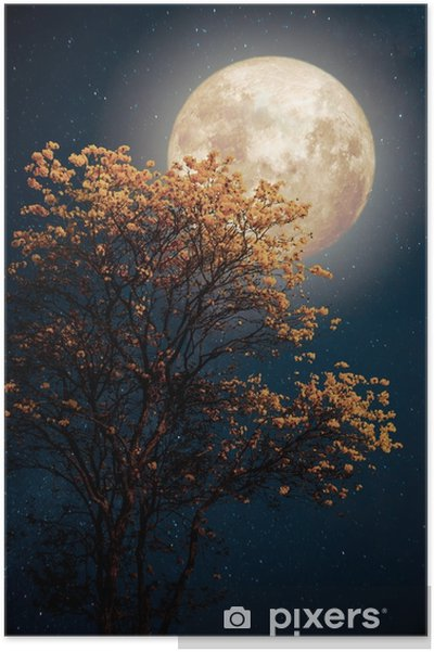 Beautiful tree yellow flower blossom with milky way star in night skies  full moon - Retro fantasy style artwork with vintage color tone  Poster