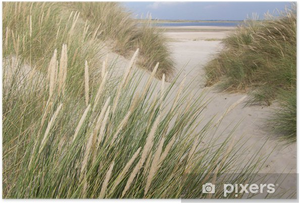 Poster Bekijk op het strand van de duinen in Nederland - Nederland