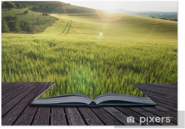Poster Belle champ de blé paysage en été plein soleil evenin - Autres sentiments