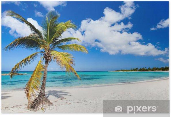 Poster Belle plage des Caraïbes - Eau