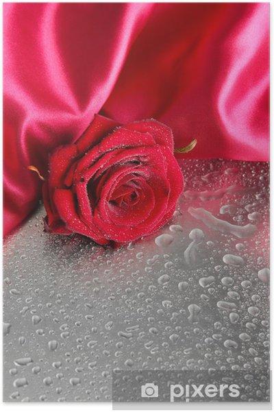 Poster Belle rose rouge et tissu de soie sur fond gris humide - Fleurs