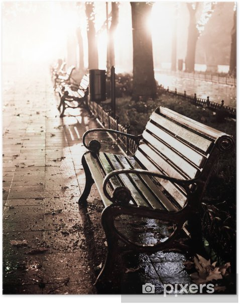 Bench in night alley with lights in Odessa, Poster - Styles
