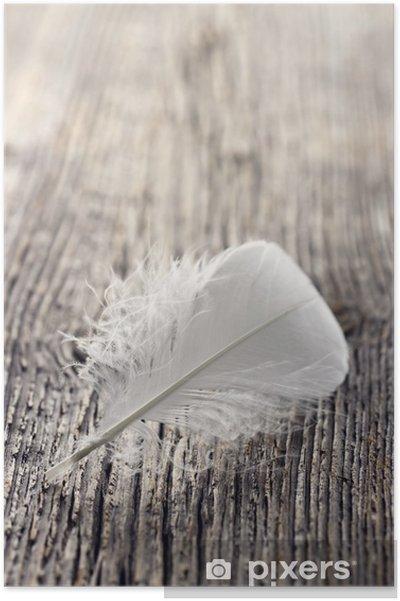 Póster Blanco pluma - Casa y jardín