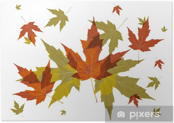 Blatter Herbst Poster Pixers We Live To Change