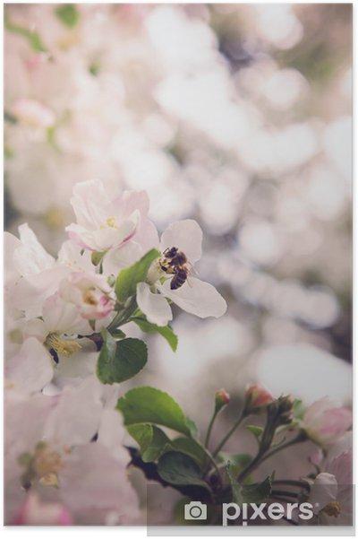 Poster Bliss de printemps - Saisons