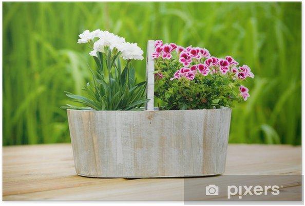 Bloemen In Pot.Poster Bloemen In Pot