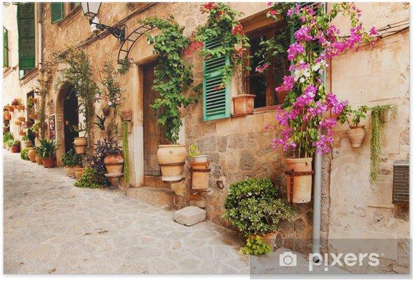 Poster Blommor på väggen - Destinationer