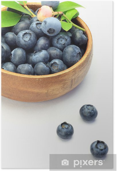 Poster Blueberry - Fruits