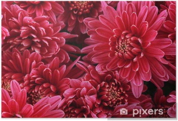 Poster Bouquet de rose automne chrysanthème, près - Fleurs