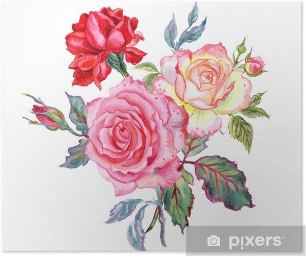 Poster Bouquet De Roses Aquarelle Dessin Sur Fond Blanc Isole