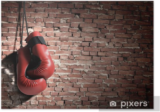 Boxing gloves Poster - Themes