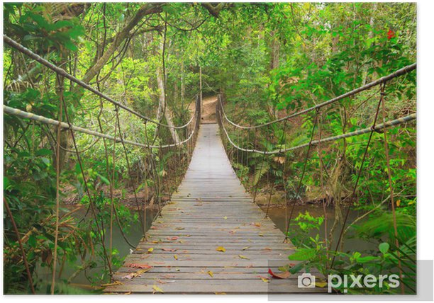 Bridge to the jungle,Khao Yai national park,Thailand Poster - Styles