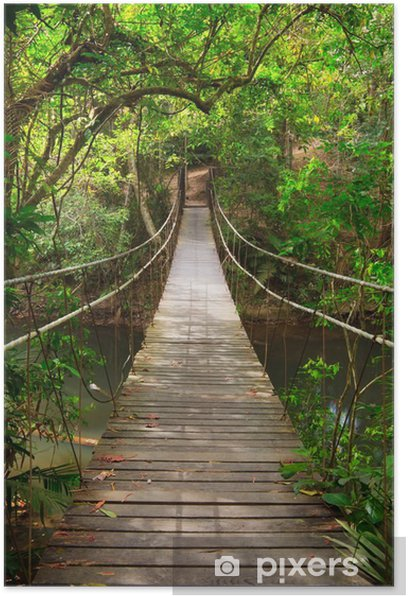 Bridge to the jungle,Khao Yai national park,Thailand Poster -