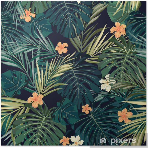 Poster Bright fond transparent tropical coloré avec des feuilles et - Fleurs et plantes