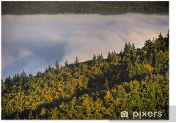 Poster Brouillard sur une vallée 3 - Forêt