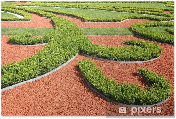 Poster Buissons du jardin d\'ornement dans le jardin paysager diverses formes