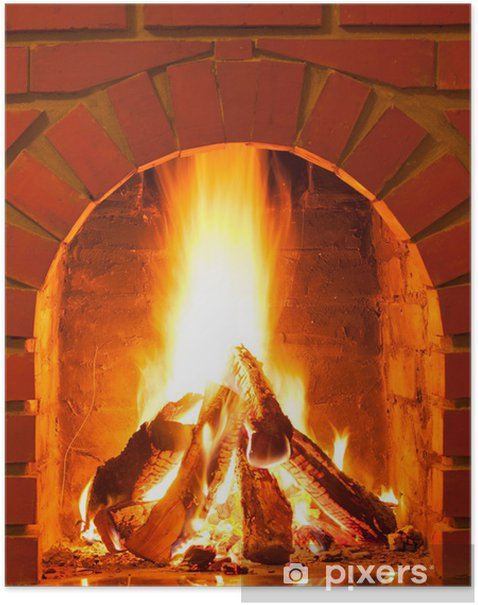 Burning fire Poster - Ecology