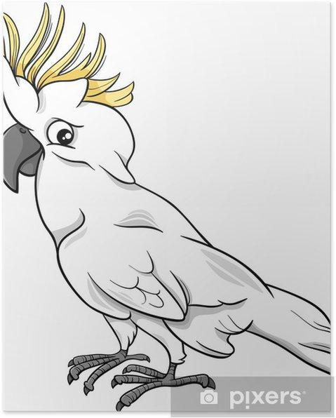Póster Cacatúa Loro De Dibujos Animados