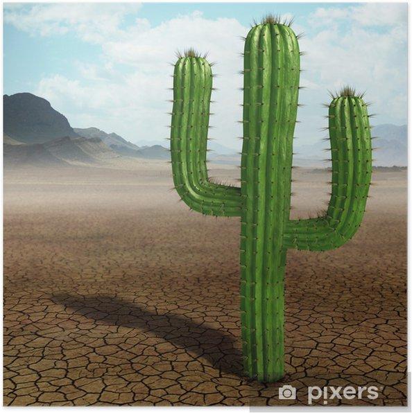 Póster Cactus en el desierto - Desierto